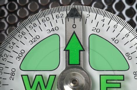 Báscula de Peso verde